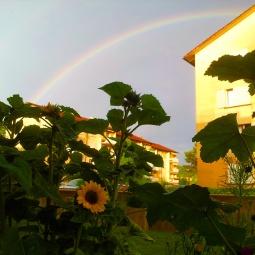...die Schönheit eines Regenbogens.