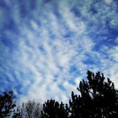 ...ein blauer Himmel nach einer gefühlten Ewigkeit Nebel.