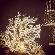 ...der Augenblick, wenn der erste Schnee des Winters fällt.