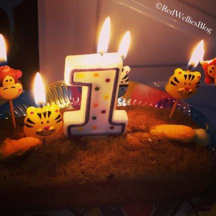 ...den 1. Geburtstag deines Kindes feiern zu können.